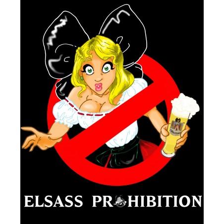 Bière Elsass Prohibition 33cl